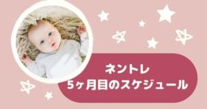 【ネントレ】生後5ヶ月のスケジュール 離乳食始まってからの過ごし方